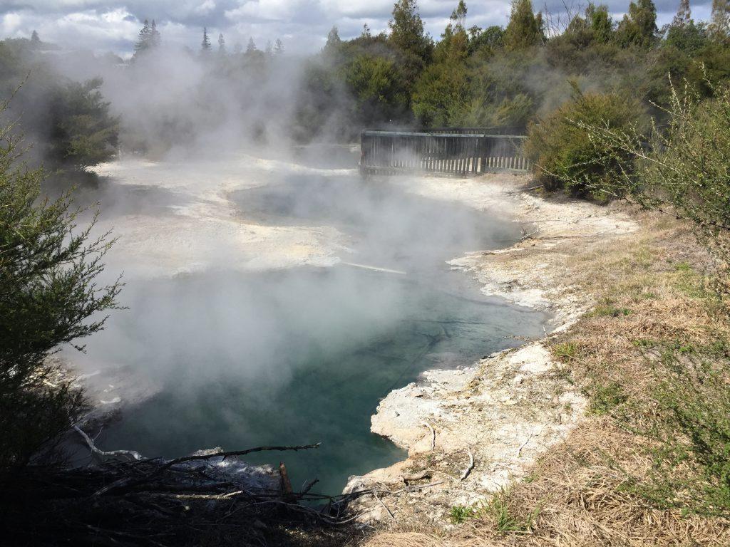 Rotorua Hot Springs in Kuirau Park