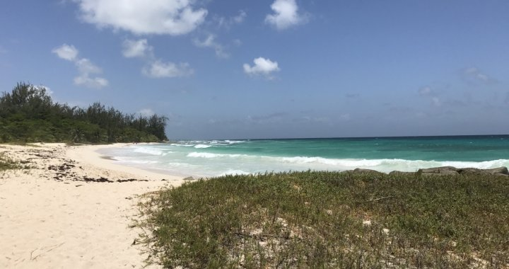 Lorraine's Musings: Beautiful Day in Barbados